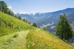 Θερινό τοπίο με τα βουνά, Αυστρία Στοκ Εικόνες