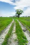 Θερινό τοπίο με την πράσινους χλόη, το δρόμο και τα σύννεφα Στοκ εικόνα με δικαίωμα ελεύθερης χρήσης
