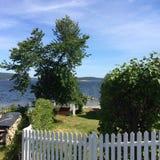Θερινό τοπίο με τις εγκαταστάσεις και τη θάλασσα Στοκ εικόνες με δικαίωμα ελεύθερης χρήσης