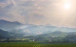 Θερινό τοπίο με τον οπωρώνα και τον ουρανό στοκ φωτογραφία με δικαίωμα ελεύθερης χρήσης