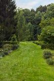 Θερινό τοπίο με τον πράσινο χορτοτάπητα και πορεία στο δασικό, εκλεκτικό φ Στοκ εικόνα με δικαίωμα ελεύθερης χρήσης