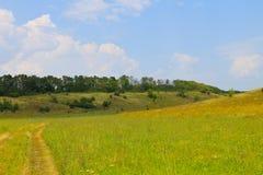 Θερινό τοπίο με το λιβάδι, τα δέντρα και τους λόφους Στοκ Φωτογραφίες
