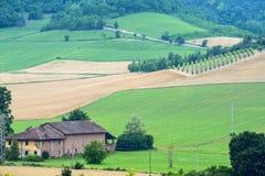 Θερινό τοπίο σε Monferrato (Ιταλία) Στοκ εικόνα με δικαίωμα ελεύθερης χρήσης