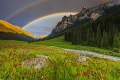 Θερινό τοπίο στα βουνά με τα λουλούδια, ένα ουράνιο τόξο Στοκ φωτογραφία με δικαίωμα ελεύθερης χρήσης