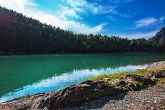 Θερινό τοπίο στον ποταμό Katun Altai, νότια Σιβηρία, RU στοκ φωτογραφίες