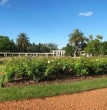 Θερινό τοπίο στους κήπους των τριαντάφυλλων Puerto Madero στο σούρουπο Στοκ φωτογραφία με δικαίωμα ελεύθερης χρήσης