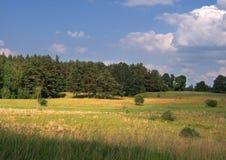 Θερινό τοπίο στοκ φωτογραφίες με δικαίωμα ελεύθερης χρήσης