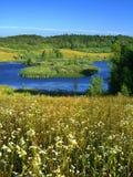 Θερινό τοπίο στοκ εικόνα με δικαίωμα ελεύθερης χρήσης