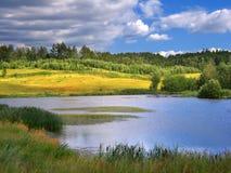Θερινό τοπίο στοκ φωτογραφία με δικαίωμα ελεύθερης χρήσης