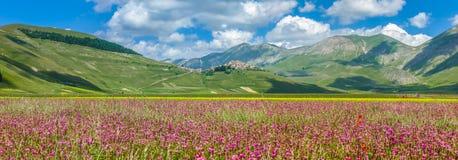 Θερινό τοπίο Grande πιάνων, Ουμβρία, Ιταλία Στοκ φωτογραφίες με δικαίωμα ελεύθερης χρήσης