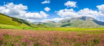 Θερινό τοπίο Grande πιάνων, Ουμβρία, Ιταλία Στοκ εικόνες με δικαίωμα ελεύθερης χρήσης