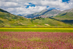 Θερινό τοπίο Grande πιάνων, Ουμβρία, Ιταλία Στοκ εικόνα με δικαίωμα ελεύθερης χρήσης