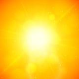 Θερινό υπόβαθρο, θερινός ήλιος με τη φλόγα φακών Στοκ Εικόνες