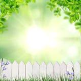 Θερινό υπόβαθρο με το φράκτη στοκ εικόνες με δικαίωμα ελεύθερης χρήσης