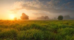 Θερινό misty πρωί Στοκ φωτογραφία με δικαίωμα ελεύθερης χρήσης