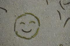 Θερινό smiley Στοκ Εικόνες