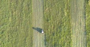Θεριστής με την περιστροφική κίνηση κοπτών κατά μήκος του καλλιεργήσιμου εδάφους το καλοκαίρι απόθεμα βίντεο
