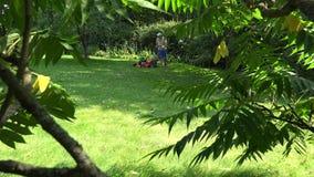 Θεριστής χορτοταπήτων έναρξης ατόμων εργαζομένων και χλόη περικοπών Άποψη μέσω των φύλλων δέντρων 4K απόθεμα βίντεο