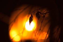 Θερμά χειμερινά βράδια Μια θερμή διάθεση στοκ εικόνα
