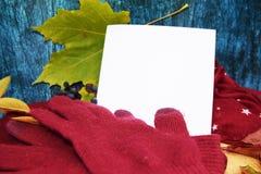 Θερμά burgundy γάντια με ένα μαντίλι και ένα καπέλο στο ξύλινο μπλε χρώμα υποβάθρου με τα φύλλα φθινοπώρου, και περιορίζοντας ένα Στοκ εικόνα με δικαίωμα ελεύθερης χρήσης