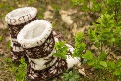 Θερμές κάλτσες στο δάσος Στοκ φωτογραφίες με δικαίωμα ελεύθερης χρήσης