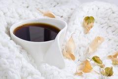 Θερμή άσπρη κούπα καφέ Στοκ Εικόνες