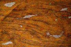 Θερμή καφετιά ξύλινη κινηματογράφηση σε πρώτο πλάνο σύστασης, υπόβαθρο φωτογραφιών ξυλείας Φυσικό ξύλινο σκηνικό Στενοχωρημένος ξ στοκ εικόνα