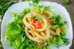 θερμή σαλάτα με το τηγανισμένο calamari Στοκ φωτογραφία με δικαίωμα ελεύθερης χρήσης