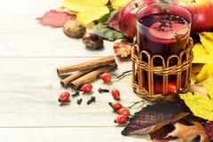 Θερμαίνοντας τσάι φθινοπώρου Στοκ εικόνα με δικαίωμα ελεύθερης χρήσης