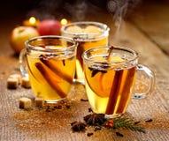 Θερμαμένος μηλίτης με την κανέλα, το γλυκάνισο, τα γαρίφαλα και τα εσπεριδοειδή Στοκ εικόνα με δικαίωμα ελεύθερης χρήσης