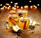 Θερμαμένος μηλίτης με την κανέλα, το γλυκάνισο, τα γαρίφαλα και τα εσπεριδοειδή Στοκ Εικόνες