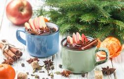Θερμαμένο κρασί με το μήλο Στοκ φωτογραφία με δικαίωμα ελεύθερης χρήσης