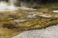 Θερμικός ατμός Yellowstone Στοκ εικόνες με δικαίωμα ελεύθερης χρήσης