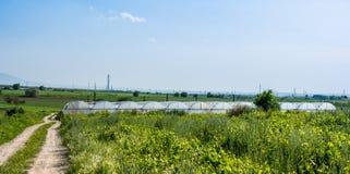 Θερμοκήπια για την ανάπτυξη των λαχανικών στοκ φωτογραφίες