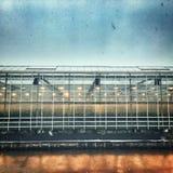 Θερμοκήπια Grunge Στοκ φωτογραφία με δικαίωμα ελεύθερης χρήσης