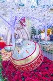 Θερμοκήπιο & βοτανικοί κήποι ξενοδοχείων του Μπελάτζιο Στοκ εικόνα με δικαίωμα ελεύθερης χρήσης