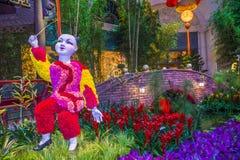 Θερμοκήπιο & βοτανικοί κήποι ξενοδοχείων του Μπελάτζιο Στοκ Φωτογραφίες