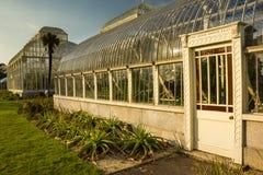 θερμοκήπιο Εθνικοί βοτανικοί κήποι Δουβλίνο Ιρλανδία στοκ φωτογραφίες