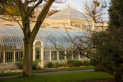 θερμοκήπιο Εθνικοί βοτανικοί κήποι Δουβλίνο Ιρλανδία στοκ φωτογραφίες με δικαίωμα ελεύθερης χρήσης