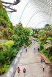 Θερμοκήπιο κήπων σύννεφων στη Σιγκαπούρη Στοκ Εικόνα