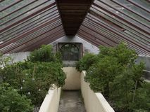 Θερμοκήπιο κήπων Bambouseraie στοκ εικόνες