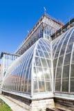 Θερμοκήπιο στο βοτανικό κήπο sankt-peterburg Στοκ Εικόνα