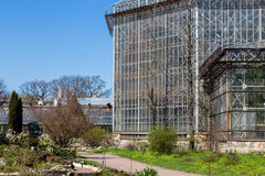 Θερμοκήπιο στο βοτανικό κήπο sankt-peterburg Στοκ φωτογραφία με δικαίωμα ελεύθερης χρήσης