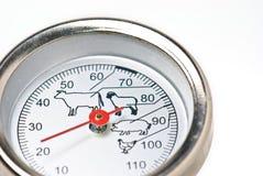 θερμόμετρο κρέατος στοκ φωτογραφίες