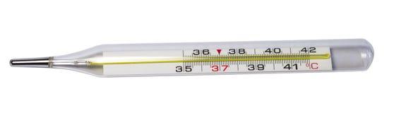 Θερμόμετρο Στοκ εικόνα με δικαίωμα ελεύθερης χρήσης
