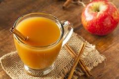 Θερμός καυτός μηλίτης της Apple Στοκ Εικόνες