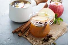 Θερμός μηλίτης μήλων με τα καρυκεύματα Στοκ εικόνες με δικαίωμα ελεύθερης χρήσης