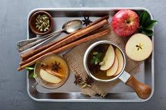 Θερμός μηλίτης μήλων με τα καρυκεύματα Στοκ φωτογραφίες με δικαίωμα ελεύθερης χρήσης