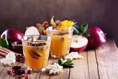Θερμός μηλίτης μήλων με τα καρυκεύματα Στοκ εικόνα με δικαίωμα ελεύθερης χρήσης