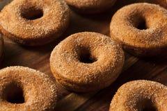 Θερμός μηλίτης Donuts της Apple Στοκ Φωτογραφία